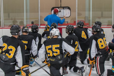 2018-19 Team Skills Training Sessions are Booking Now